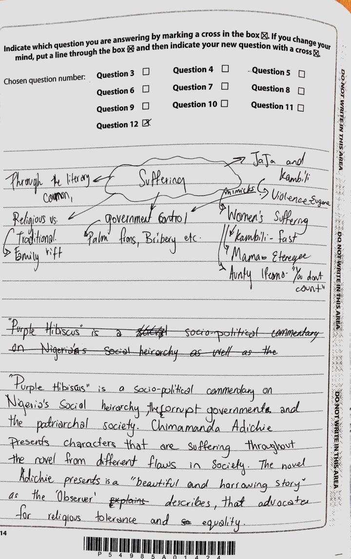 Purple Hibiscus - Suffering Essay (1)