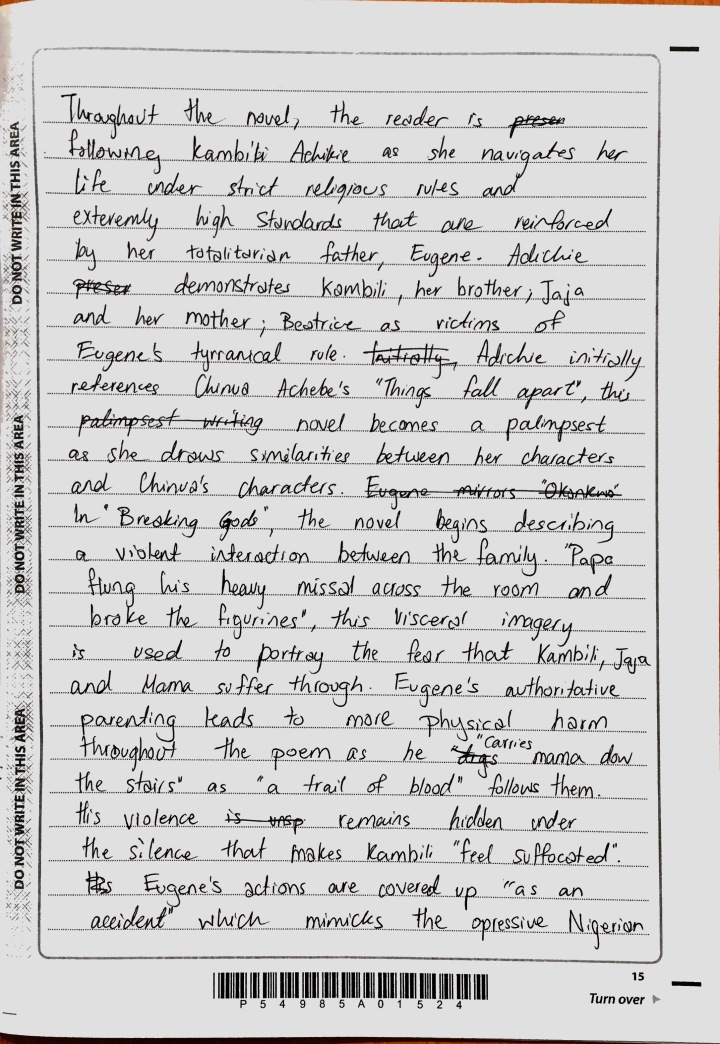 Purple Hibiscus - Suffering Essay (2)