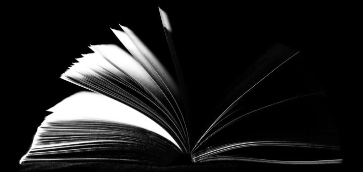 Embedding Vocabulary into the Curriculum: Romeo andJuliet