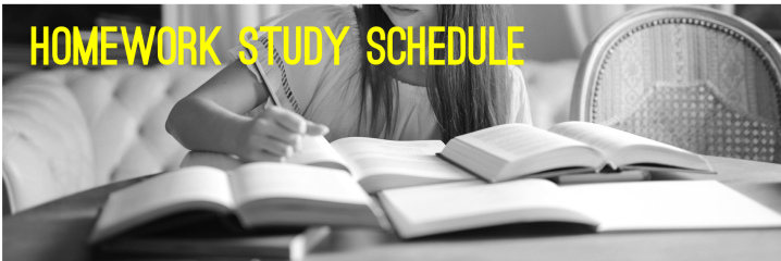 Writing from a Viewpoint: Homework Study Schedule